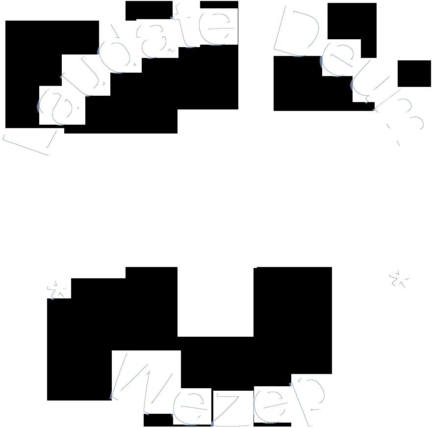 Laudate Deum Wezep